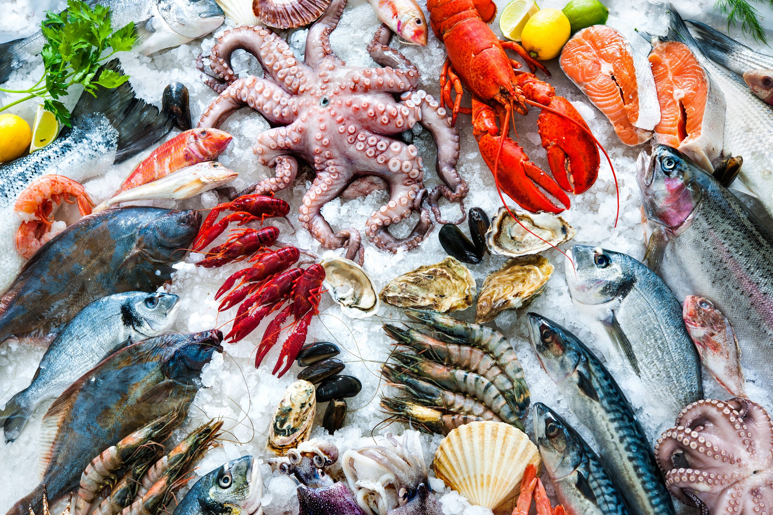 Pesce freschissimo Ristorante di Pesce Tropea